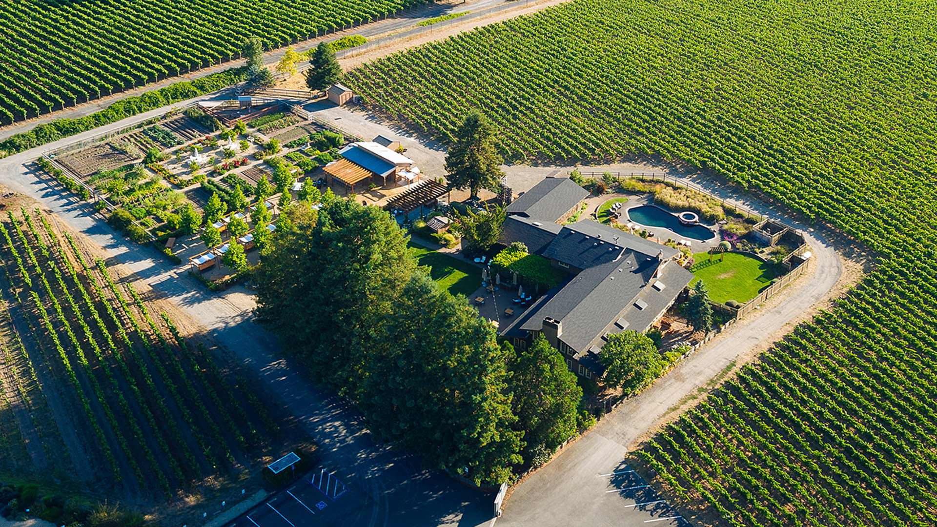 Experience The Renaissance Of Deloach Vineyards Please Join Us In Our Estate House For All New Seated Guided Tasting Experiences Click Here To Rsvp